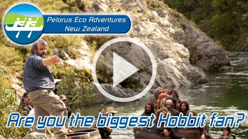Hobbit Kayak Tour Fan NZ