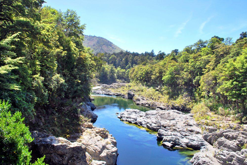 Pelorus River Kayak New Zealand