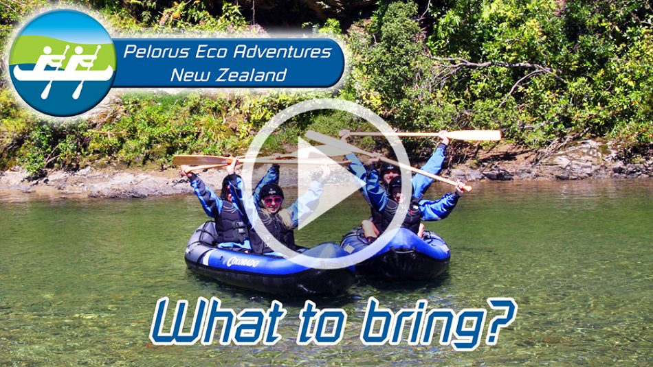 Hobbit Kayak Tour New Zealand What to Bring