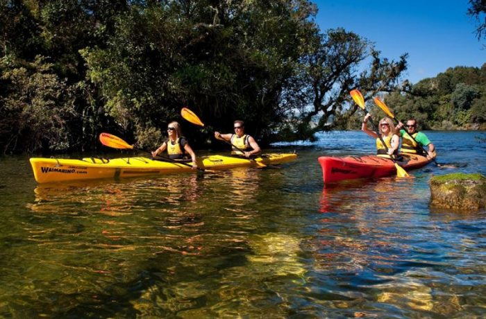 The Best 5 Kayaking Tours in New Zealand