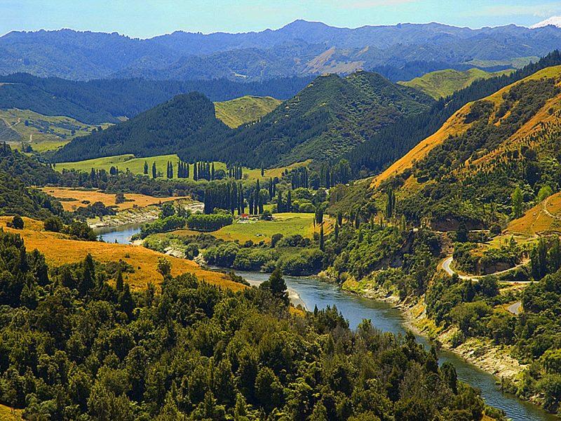 Best Kayaking Tours New Zealand Whanganui River