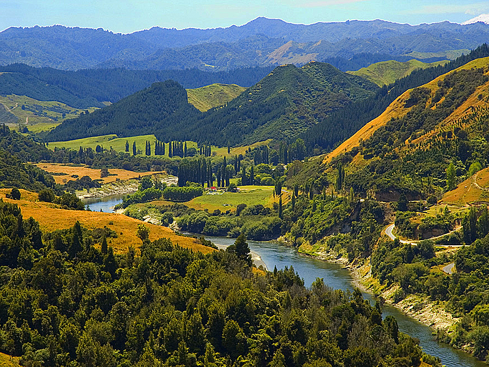 Best Kayaking Tours New Zealand Whanganui River