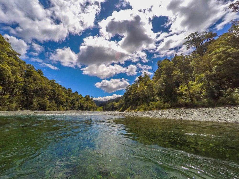 Beautiful Pelorus River in New Zealand