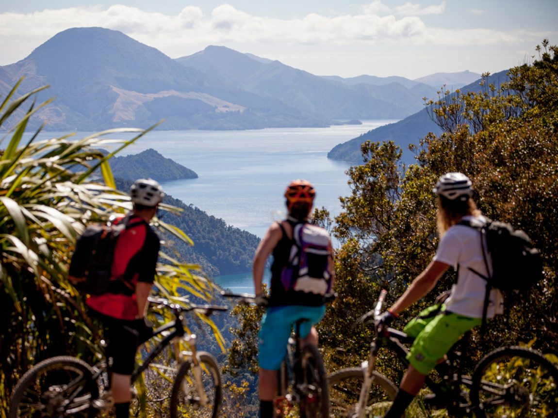 Things to do in Marlborough Cycling