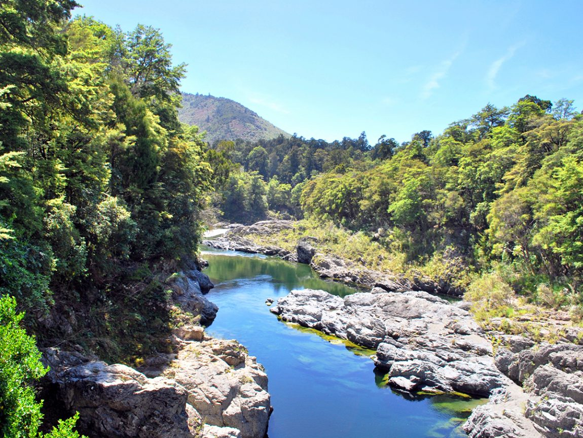 Things to do in Marlborough Pelorus River