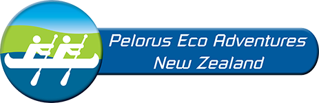 Kayak New Zealand Logo