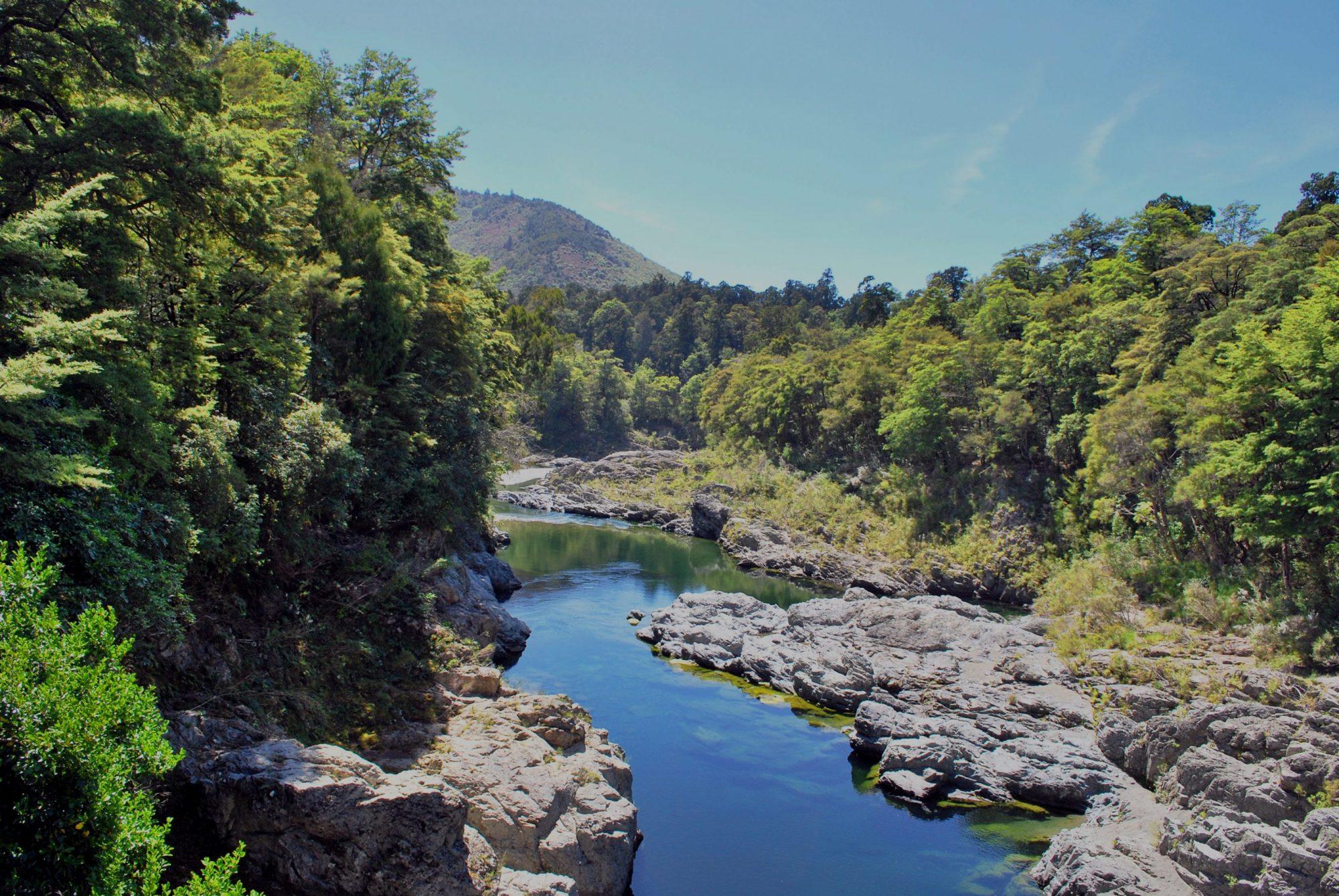 Kayak New Zealand Pelorus River