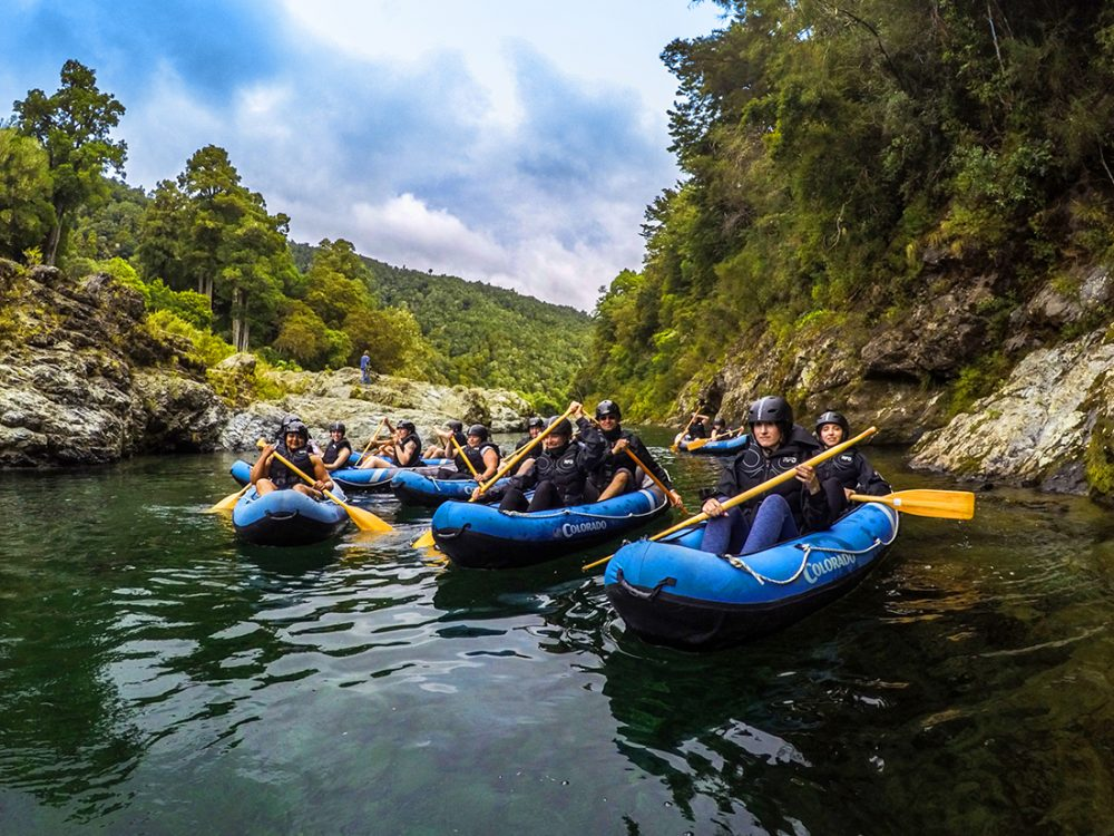 Group Kayaking Pelorus River