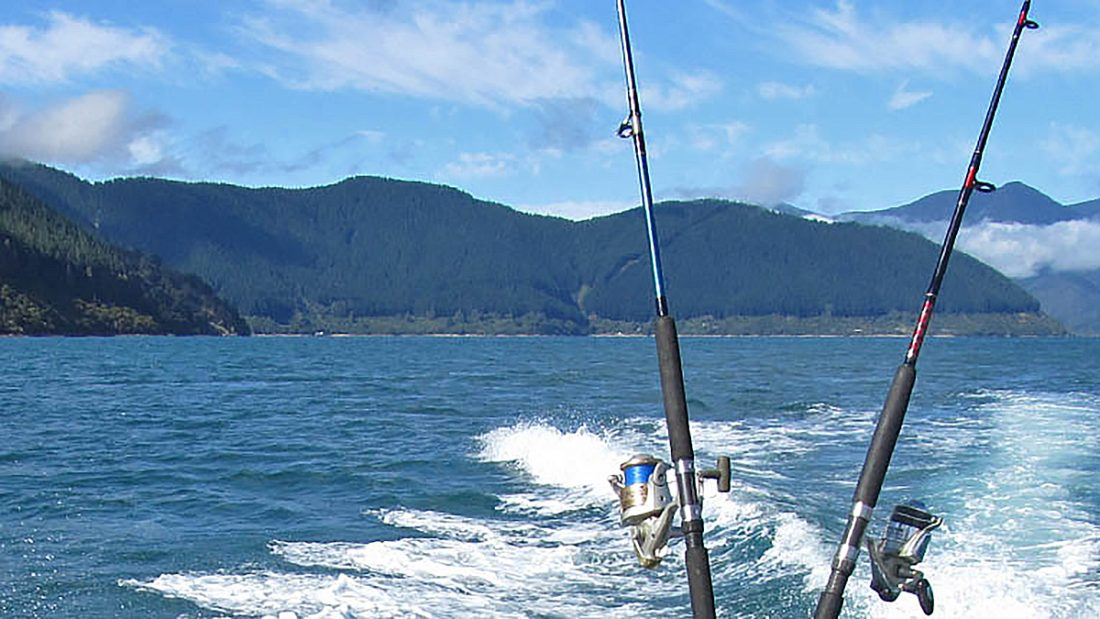 Things to do in Havelock Fishing