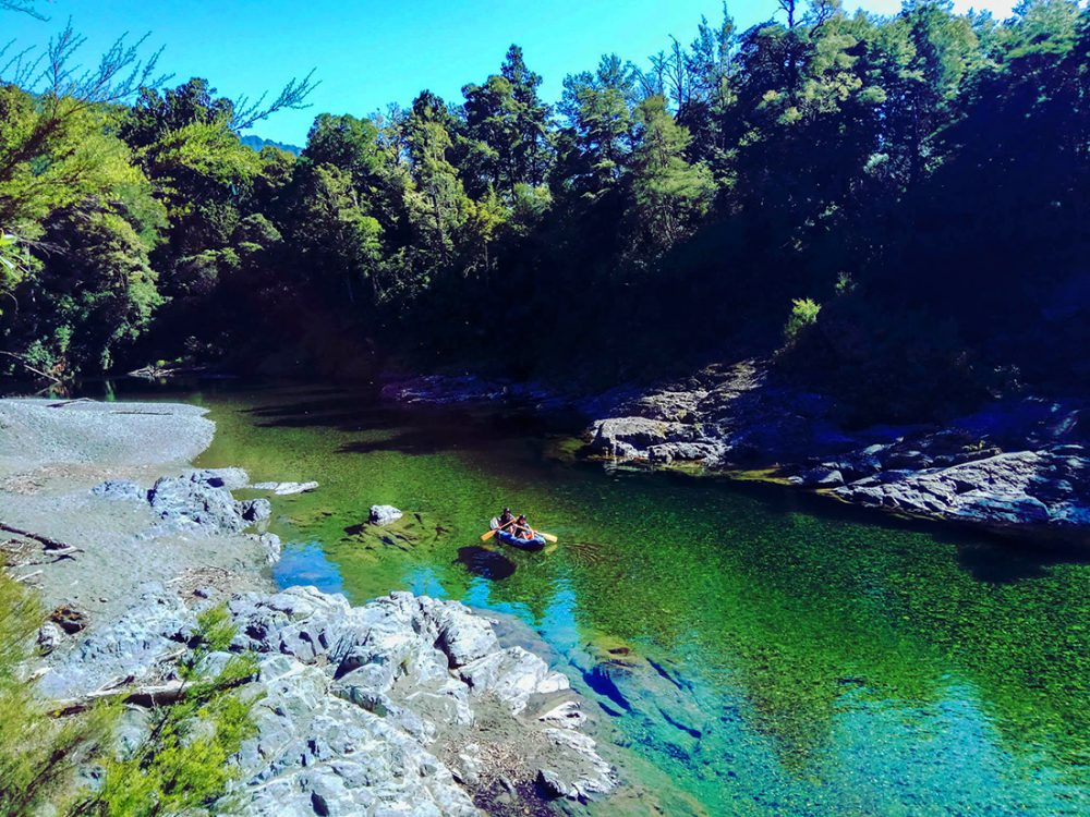 Kayaking Tour Pelorus River NZ