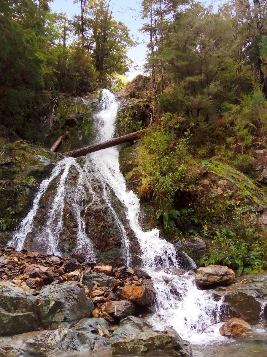 Pelorus River Falls in New Zealand