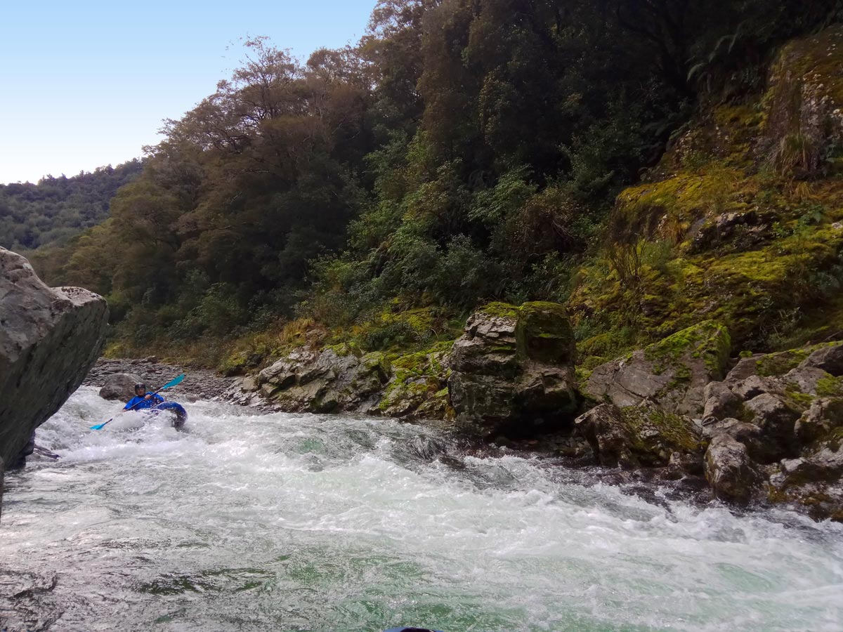 Kayaking Pelorus River Rapids in New Zealand