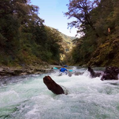 Rapids at Pelorus River, New Zealand