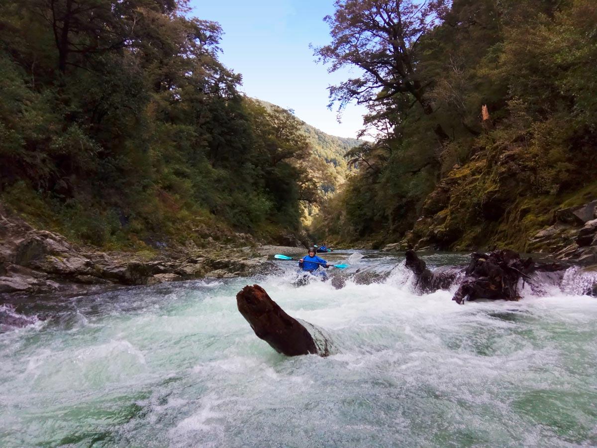 Rapids at Pelorus River, New Zealand