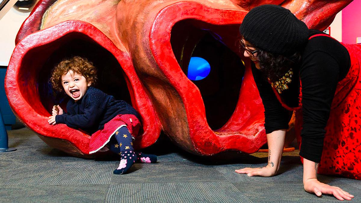 Travel in New Zealand with Kids in Te Papa Museum