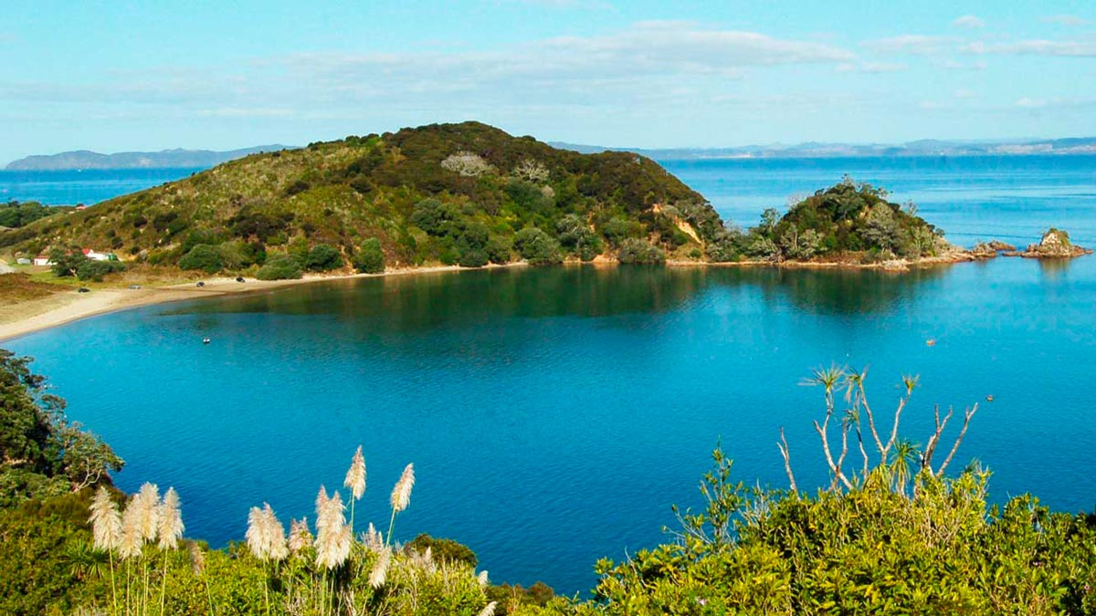 Hiddden Kayaking Gems New Zealand's North Island Lake Doubtless Bay