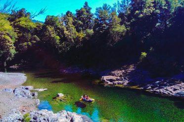 Kayak Nature Tours in New Zealand