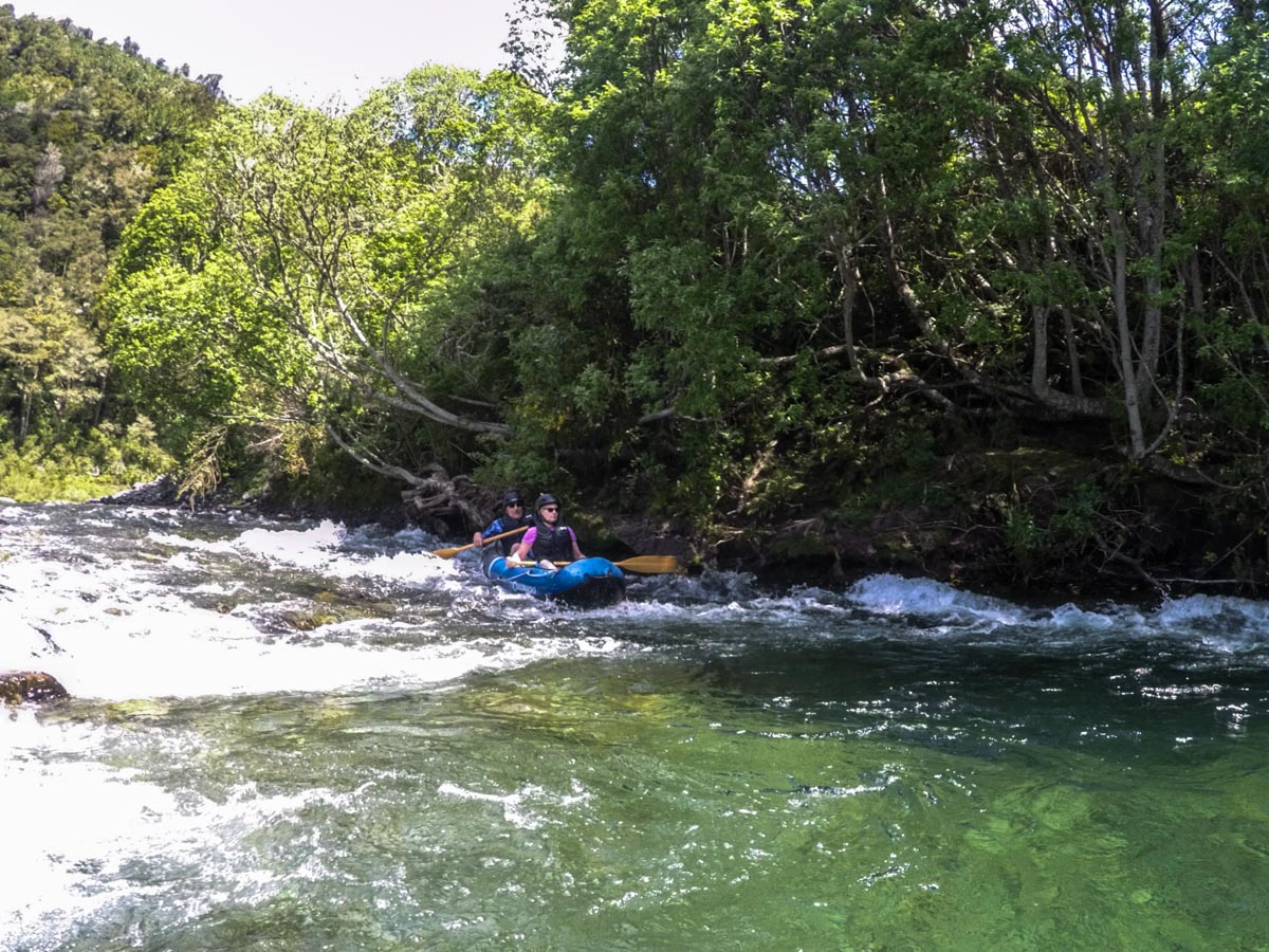 Kayaking Tour at the Pelorus River