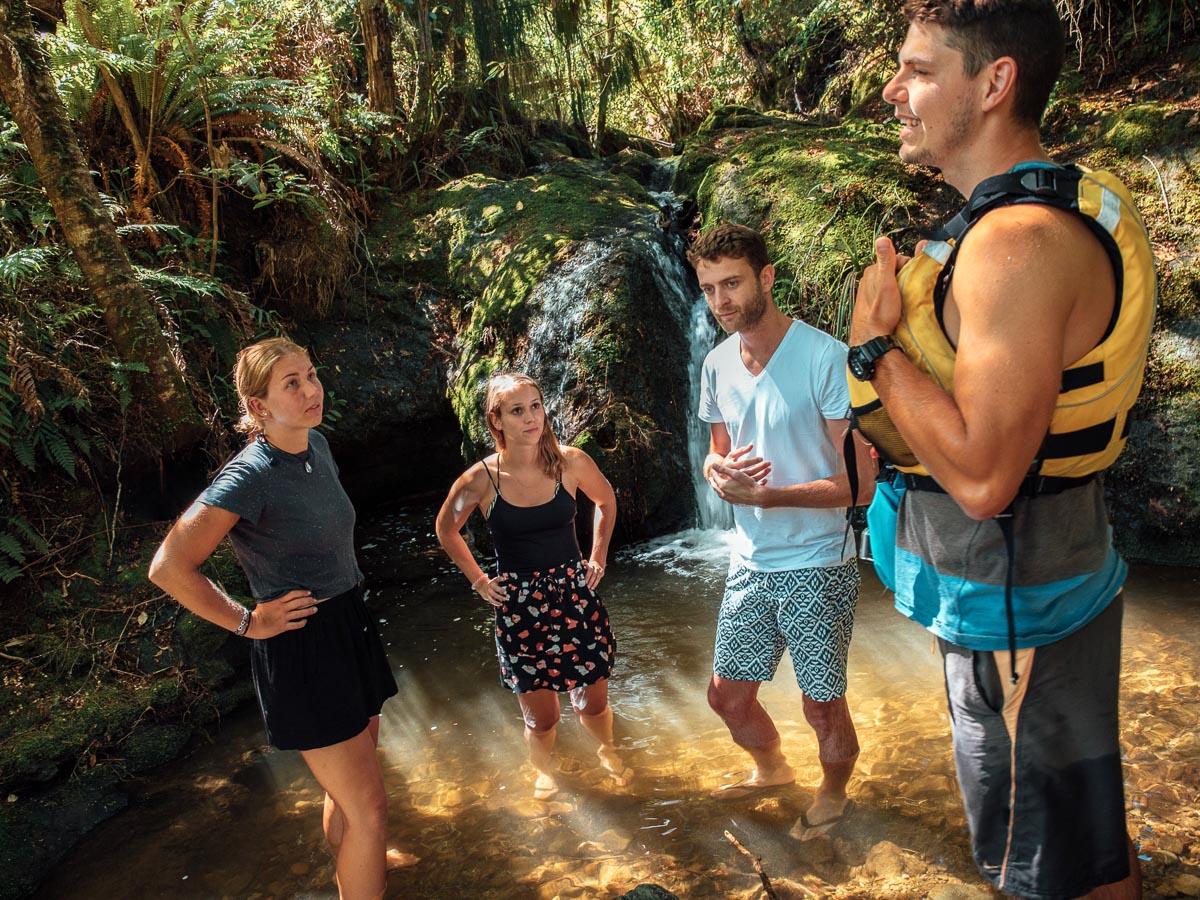 Bunch at a Natural Pool, Pelorus River