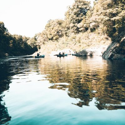 Crystal clear Water at the Pelorus River