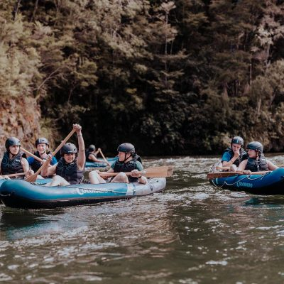 Group Kayaking at the Pelorus River
