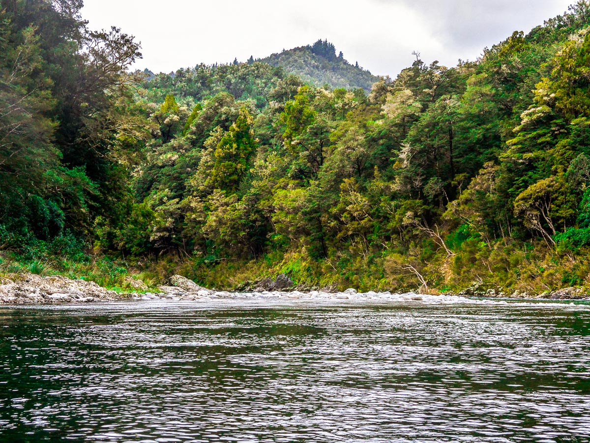 Pelorus River in Havelock, Marlborough