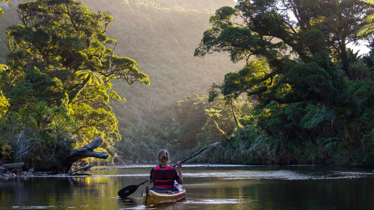 Pororari River Kayaking in New Zealand