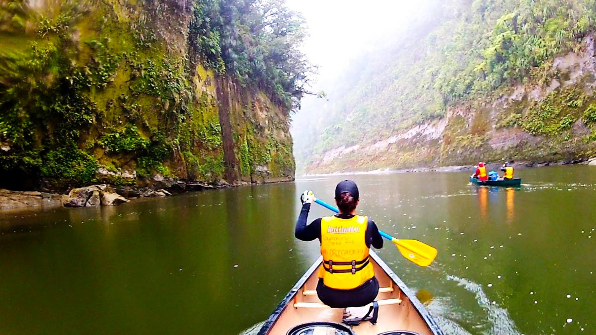 Whanganui River Kayaking in New Zealand