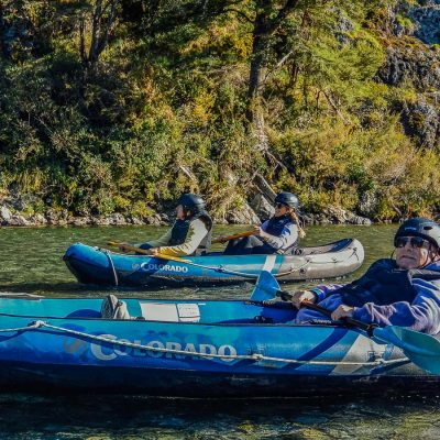 Group kayaking the Pelorus river