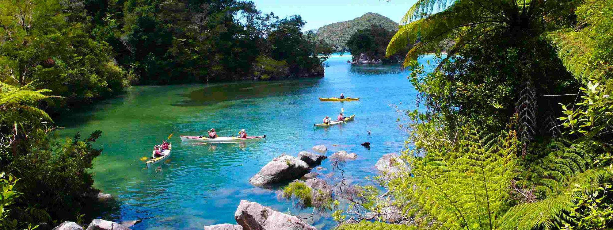 Sea Kayaking New Zealand Banner