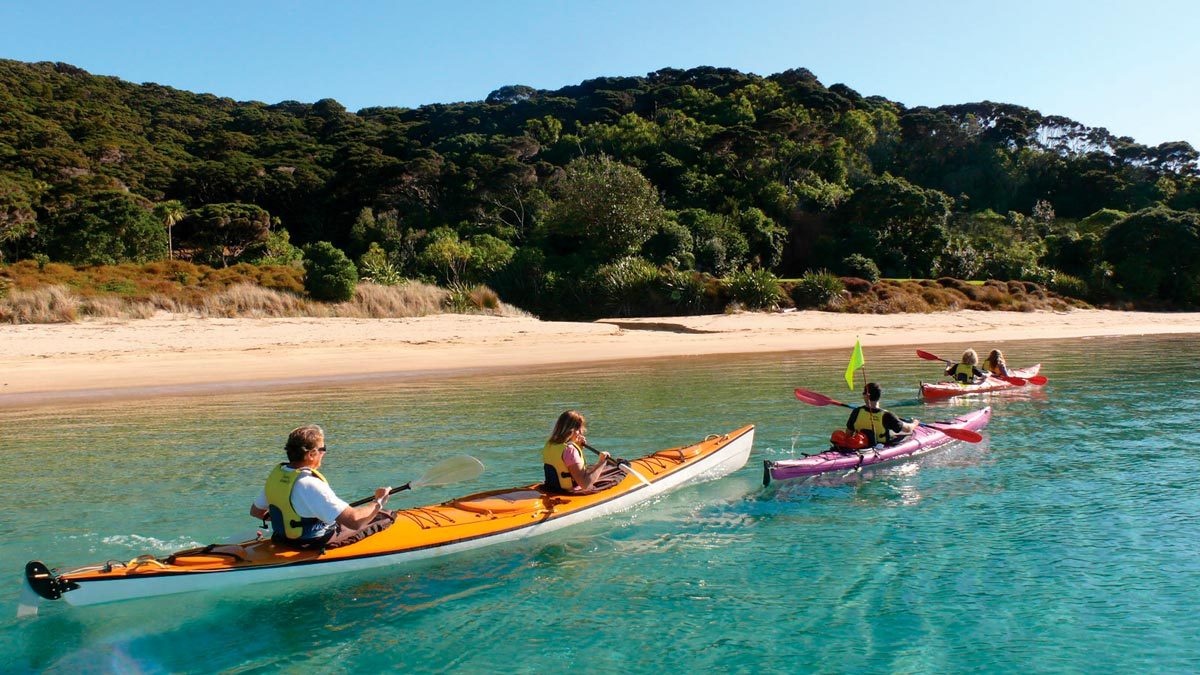 Luxury Kayaking Tour at Bay of Islands