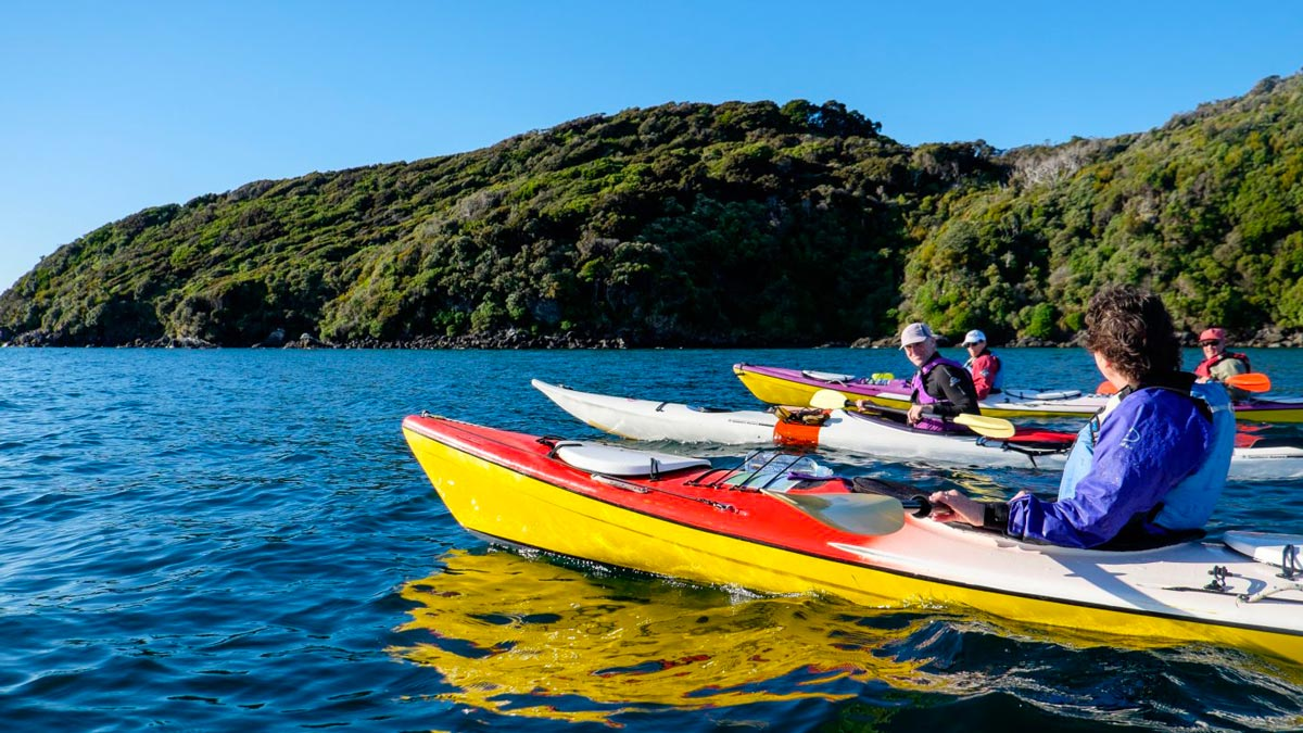 Luxury Kayaking Tour at Stewart Island