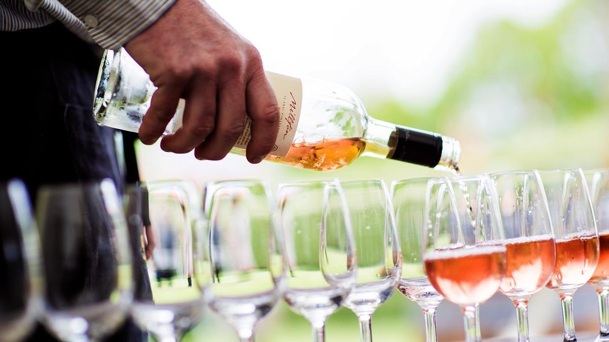 Best Wine Regions New Zealand Gisborne