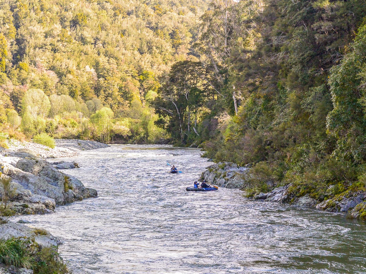 The Pelorus river in New Zealand